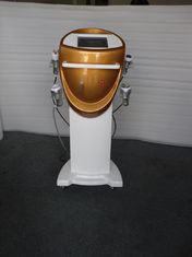China Stand Ultrasonic Cavitation Tripolar RF Beauty Equipment Manufacturer supplier